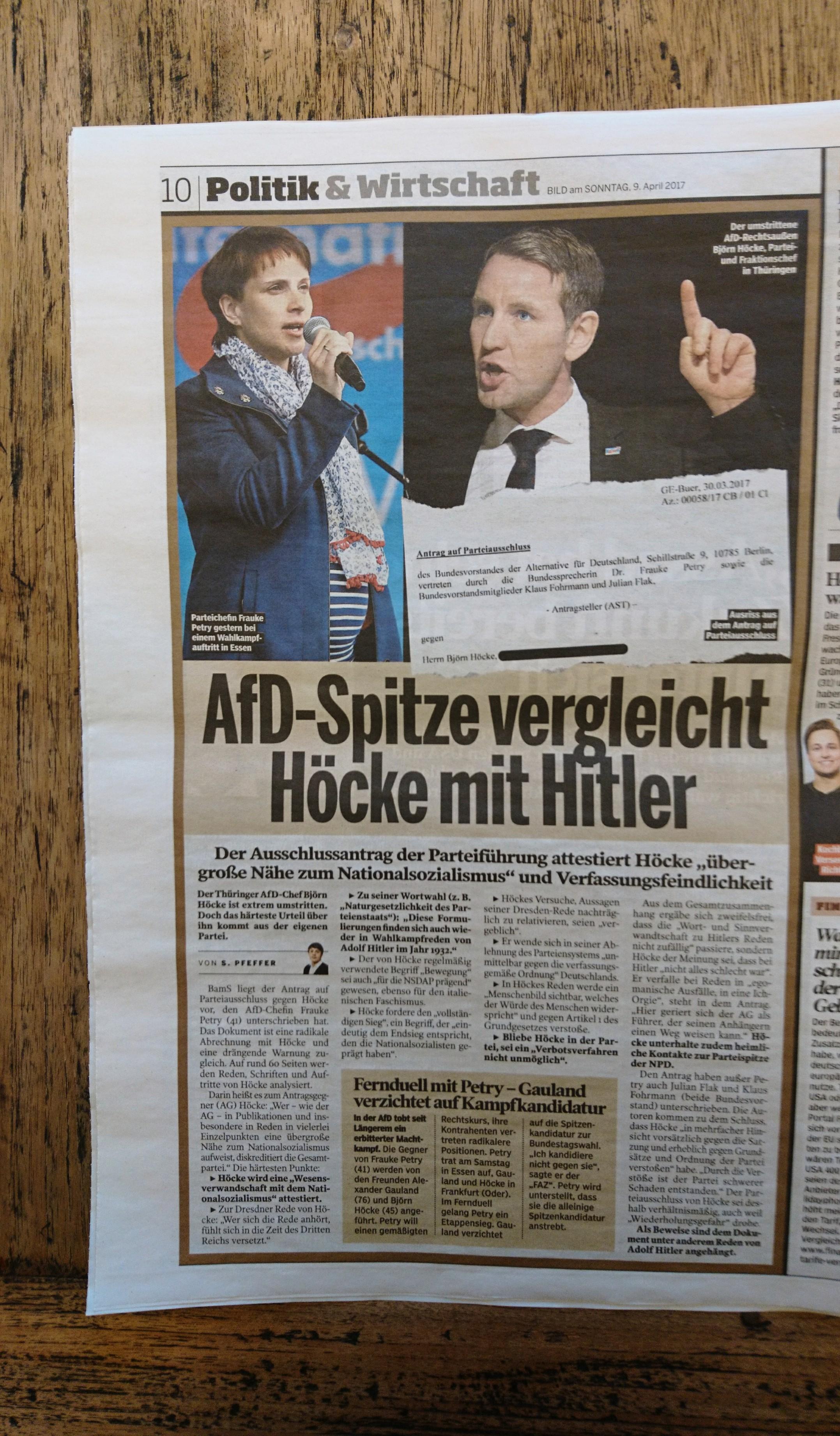 AfD Höcke Ausschlussantrag BamS 09. April 2017